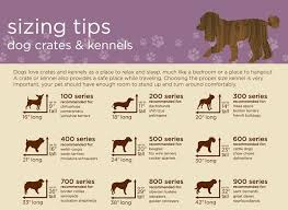 dog crates size chart advice on crate training your dog my pet warehouse