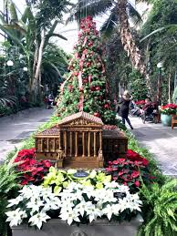 in the garden court at usbg there are thousands of poinsettias along with 12 dc landmarks including the supreme court capitol building