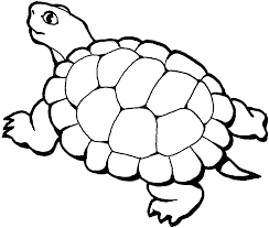 turtle coloring pages. Brilliant Coloring Free Turtle Coloring Page Intended Coloring Pages O