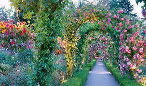 garden design alan titchmarsh create bigger space uploadexpress