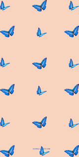Butterfly on light peach background ...