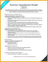 Insurance Agent Sample Resume Familycourt Us