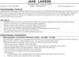Sample Personal Profile For Resume Sample Personal Profile For