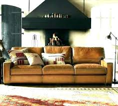 dog friendly couches cat couch pet furniture fabric leather upholstery best