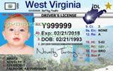 Fake Id Templates Free Guide Myoids