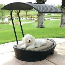 Outdoor Dog Bed With Canopy Cool Dog Canopy Bed With Awesome Dog ...