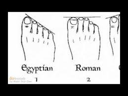 Ancestry Genealogy And Shape Of Your Toes Based On This