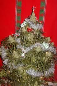 marijuana plant christmas tree