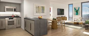 affordable luxury apartments in nyc. the ashland, 250 ashland place, nyc affordable housing, brooklyn cultural district, downtown luxury apartments in nyc x