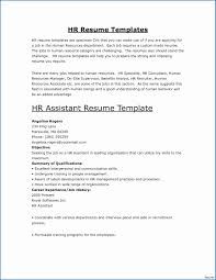 Resume Template Executive Assistant Administrative Assistant Resume Summary Sample Executive