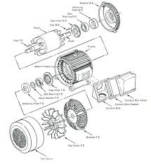 wiring diagram dayton ac electric motor wirdig