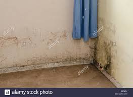 Mould Growing On Damp Wall In Bedroom Of Rented Property. UK