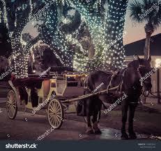 Christmas Lights Kearns Christmas Lights Horse Carriage Stock Photo Edit Now