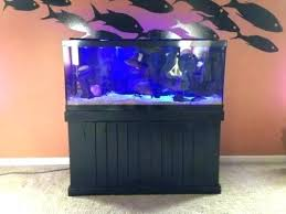 Hexagon Fish Tank For Sale Gallon Aquariums Herube