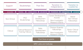 supports images how mrc supports research careers skills careers