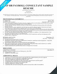 Sap Fico Sample Resume Resume Format For Sap Fico Freshers Sample Colbro Co Russiandreams