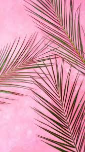 You can also upload and share your favorite pink baddie wallpapers. Baddie Pink Aesthetic Wallpapers Wallpaper Cave