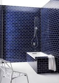 Simple Dark Blue Bathroom Tiles Subway Tile And The Hydrorail Shower Column For Models Design