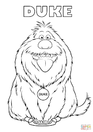 duke from the secret life of pets coloring page duke from the secret life of pets coloring page free printable on pets for coloring