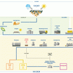 Food Processing Flow Chart Diagram Seafood Industry Pet