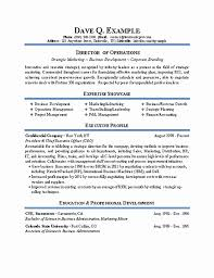 20 Board Of Directors Resume