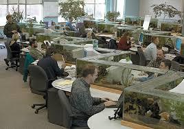 office aquarium. Office Aquarium F
