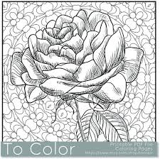 Small Picture Printable Rose Coloring Page for Adults PDF JPG Instant by ToColor
