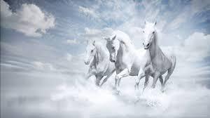 77 Desktop Wallpaper Horses On Wallpapersafari