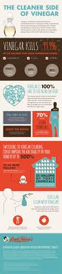 Infographic Why You Should Ditch The Cleaning Chemicals For