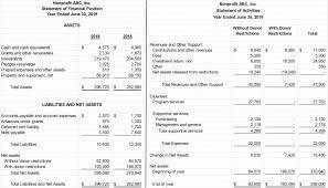 Financial Statement Examples Non Profit Financial Statement Template 15 Premium