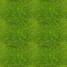 First attempt grass tiled Samantha Hannis