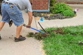 Lawns Tips for The Average Joe
