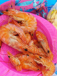 shrimp, red, food, healthy, nature ...