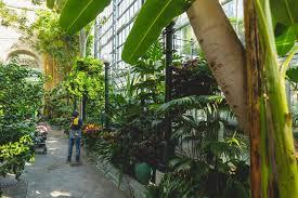 u s botanic garden on the national mall free museum in washington dc