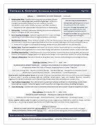 Account Manager Sample Resume Best Best Executive Resume Writer AwardWinning Sales Sample Resume By