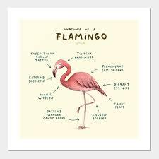 flamingo flamingo posters and art