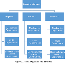 Mto Organization Chart Figure 3 From Make To Order Mto Production System