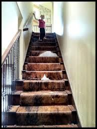 Cowhide stairs! This is amazing! www.cowhidesinternational.com