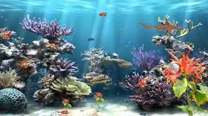 Image Result For Fishtank Background Printable Cartoon