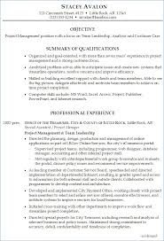 team leader cv examples group leader resume example ceciliaekici com