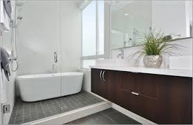 Walk In Shower Designs For Small Spaces Small Bathrooms With - Walk in shower small bathroom