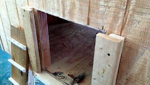 Door Design : Chicken Coop Door Design How To Build For Less Than ...