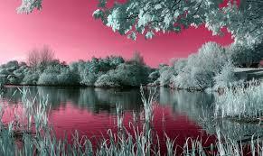 Widescreen Nature Wallpaper Hd Desktop
