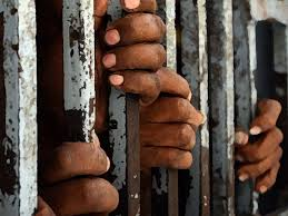 prison reform essay can you help me write an essay prison reform in americain the essay prison reform in america roger t pray points out the much attention that has been devoted to research to help