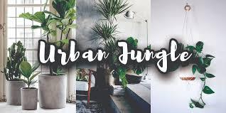Urban Jungle Tips En Woonideeën Voor Een Natuurlijk Interieur