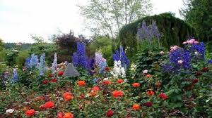 Small Picture Best Of Rose Garden Design Ideas Small Rose Garden Ideas