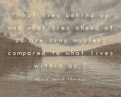 Thoreau Walden Quotes Fascinating 48 Best I Like Images On Pinterest Sayings And Quotes Philosophy