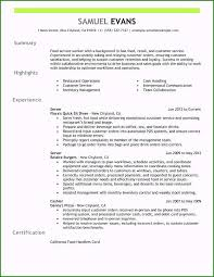 Summary Statement For Resumes Resume Summary Examples For Customer Service Ideal Job