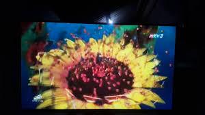 Logo thám tử lừng danh conan hoa hướng dương rực lửa htv3 - YouTube