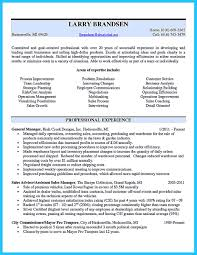 Business Owner Resume financial management professionalbusiness owner resume samples 34